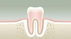 Parodontologie Auray